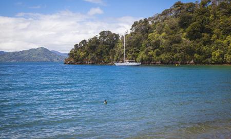 marlborough: Sailing boats Marlborough Sounds