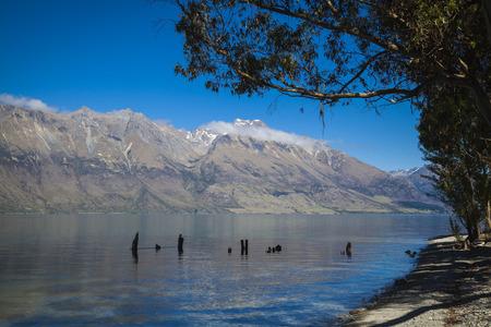 shores: Along the shores of Lake Wakatipu Stock Photo