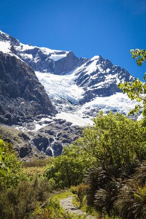 rob: Rob Roy Glacier National Park Neuseeland Stock Photo
