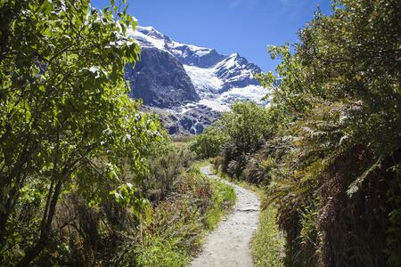 glacier national park: Rob Roy Glacier National Park Neuseeland Stock Photo