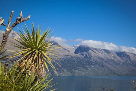 wakatipu: Along the shores of Lake Wakatipu Stock Photo