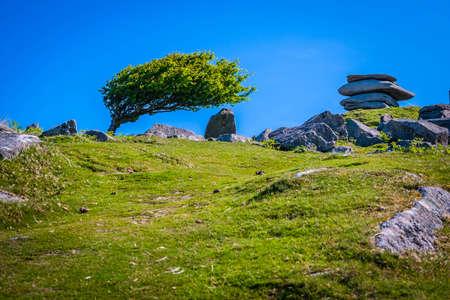 Cheesering rocks in Bodmin moor in Cornwall, UK