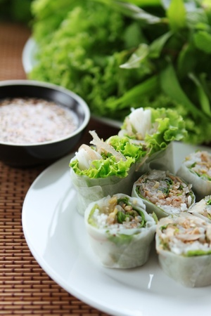 spring rolls with vegetable Stock Photo - 9747086