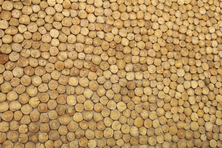 wood texture background Stock Photo