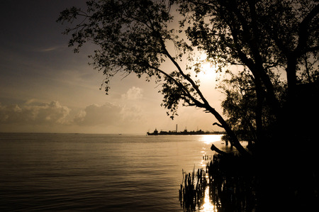 melodious: Sunrise Tomonoura sea.