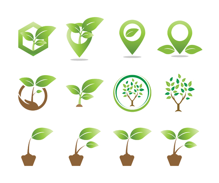 Collection of plant logo icon template vector element Illustration