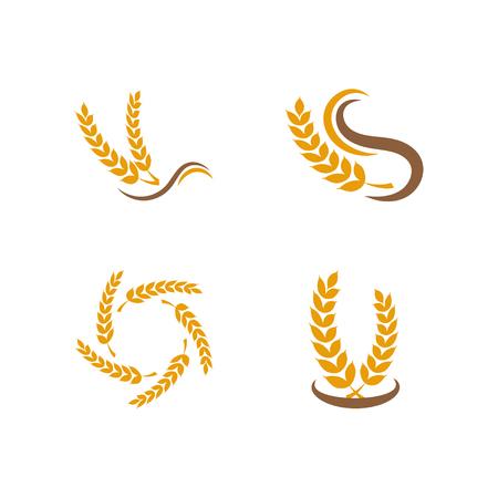 Illustration of grain icon design template