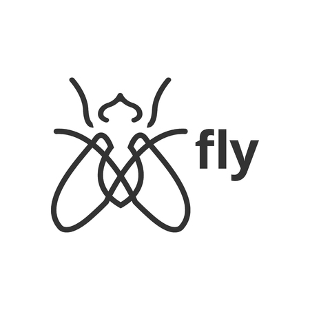 Fly insect outline graphic design template vector