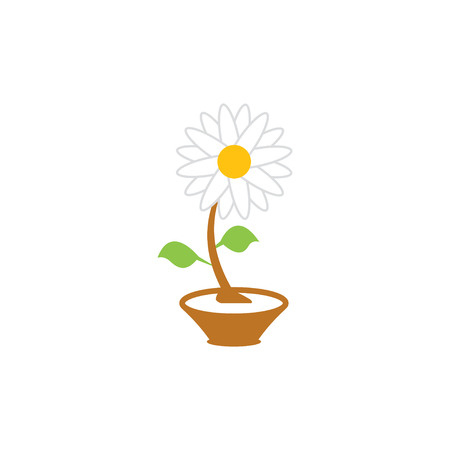 Flower graphic design template vector isolated illustration