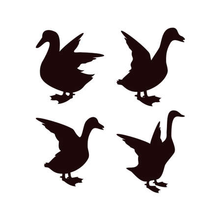 Duck icon design template vector isolated illustration Zdjęcie Seryjne - 161246342