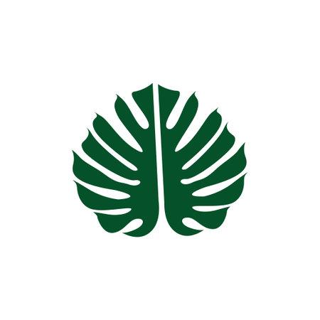 Monstera leaf icon design template vector isolated illustration Zdjęcie Seryjne - 161247073
