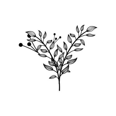 Leaf icon design template vector illustration