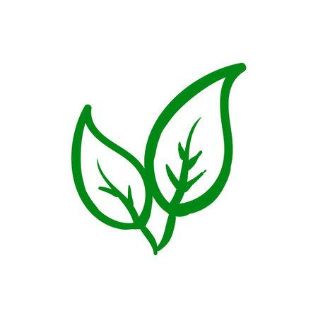 Organic leaf icon design template