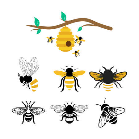 Bees icon design set bundle template isolated