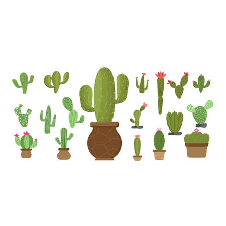 Cactus set icon design template vector isolated