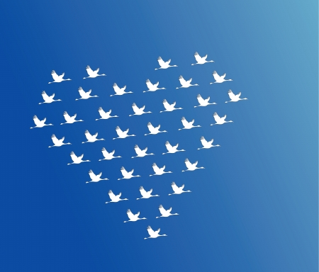 flying geese: White Swans flying or Geese flying or Crane Flying in the shape of heart against a blue sky background Illustration