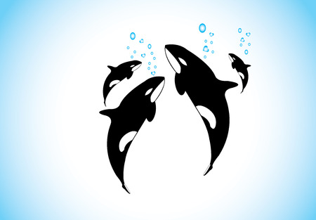 orcinus: family of killer whales swim   breathing together inside ocean  black and while realistic orca with family happily swimming inside the sea with air bubbles coming out from each - conservation concept