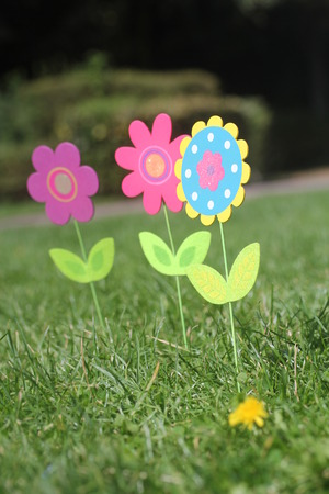 Colorful Flowers With Green Leaves Stand In Green Grass Of A Garden. Three  Beautiful Unique