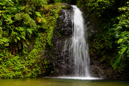 waterfall the rainforest