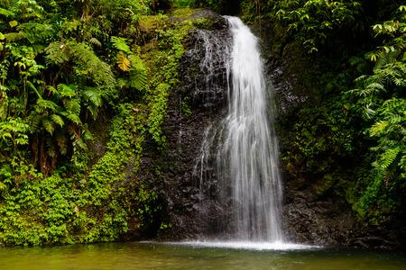 Waterval het regenwoud Stockfoto - 90144571
