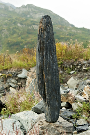oblong boulder, standing vertically on another stone, against a background of a blurred landscape