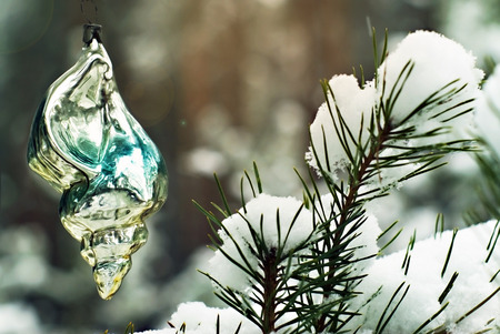 old handmade glass Christmas ornament - fascinatingly shiny sea shell - on a living fir against the background of a blurry real winter forest   Stock Photo