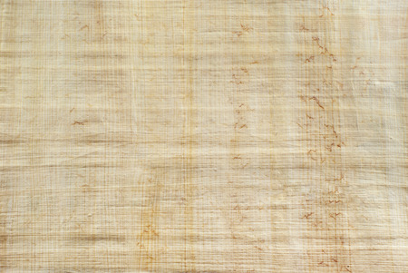 background, texture: surface of natural Egyptian papyrus, created by authentic technology