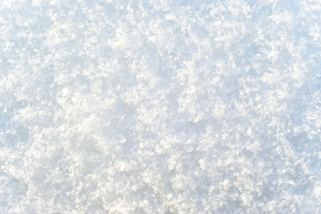 background, texture - a bright white surface of freshly fallen snow, consisting of distinguishable individual snowflakes