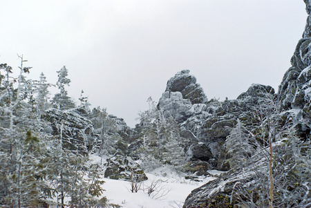 A glade with stunted trees between the icy rocks on top of the mountain on a cloudy frosty winter day Foto de archivo