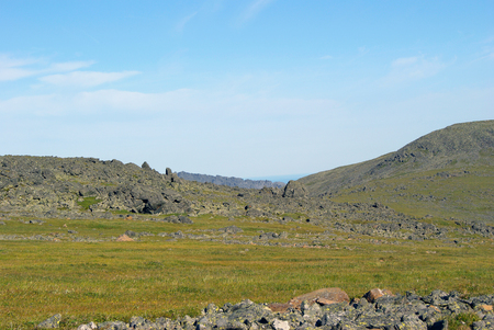 Highland landscape of the Northern Urals - mountain plateau with rocks and stones, alpine meadows and tundra in summer on a sunny day