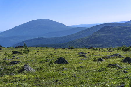 beautiful sunny summer mountain landscape of the Northern Urals
