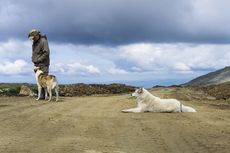 man in travel clothes communicates with two big dogs on a road in deserted mountain landscape