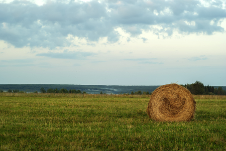large round bale of hay lays on a beveled meadow after rain Banco de Imagens - 107289428