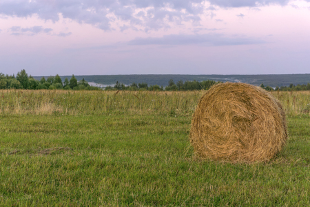 large round bale of hay lays on a beveled meadow 版權商用圖片