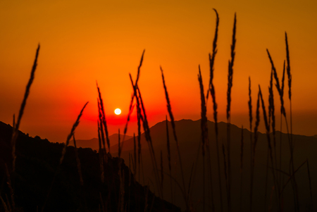 sunrise in the mountains - the rising sun over the peaks in the orange sky, visible through the blurred grass spikelets in the foreground Reklamní fotografie