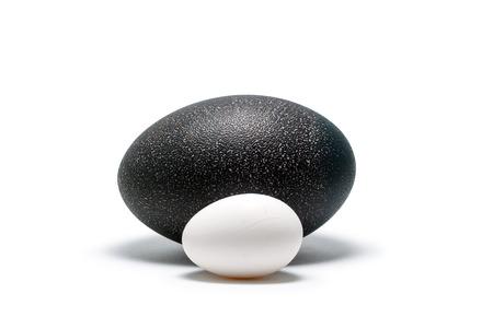 egg of hen and egg of emu lie next on white background