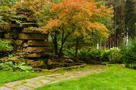 lawn among decorative coniferous bushes with a path and artificial rock of stone slabs