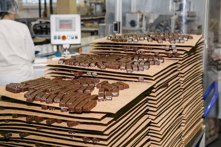 freshly prepared chocolates in the shop of the confectionery factory Stok Fotoğraf