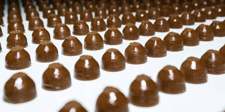 rows of toppings for chocolates on a conveyor belt of a confectionery factory close-up