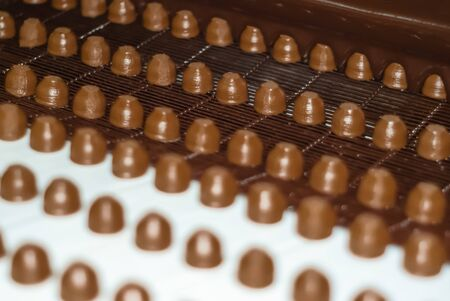 chocolate fillings move on a conveyor to a machine for pouring them with liquid chocolate