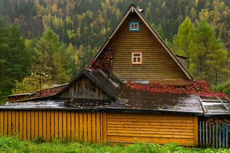 rustic wooden house with covered courtyard in the rain against the backdrop of an autumn forest