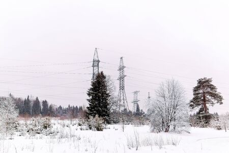 winter snowy forest landscape with a power line running along a clearing