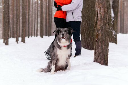 dog contemplates the winter forest while its loving owners are busy with each other in the blur in the background