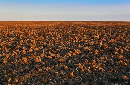 plowed field in morning light closeup, horizon blurred