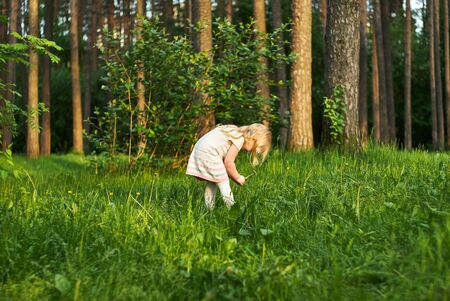little girl in a forest glade in surprise looks at dandelion flowers