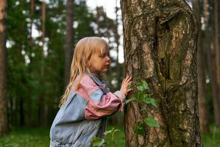 little girl with interest explores a tree trunk during a walk in the park; tree bark pattern looks like an ear