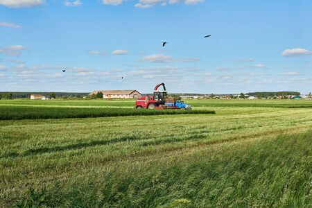 agricultural landscape with a combine harvester harvesting the crop and loading it into the truck Archivio Fotografico
