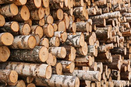 stacks of unbarked birch logs close-up Stock Photo