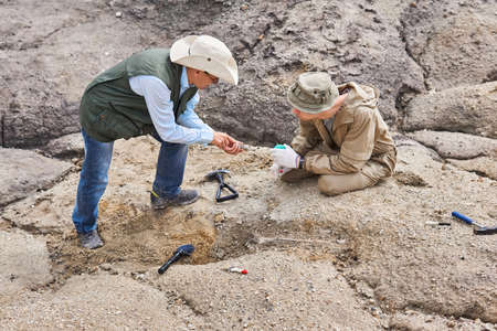 two archaeologists or paleontologists in a field expedition discuss the ancient bones excavated by them Banco de Imagens