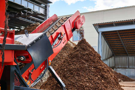 close-up conveyor of an industrial wood shredder producing wood chips from bark
